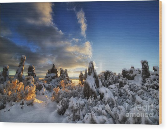 Snow On Tufa At Mono Lake Wood Print