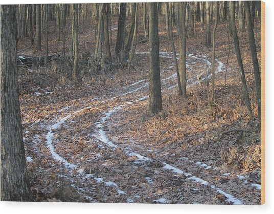 Snow Path Winding Through The Woods Wood Print by Annette Gendler