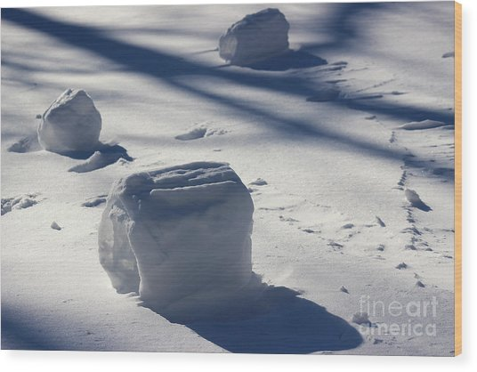 Snow Roller Trio In Shadows Wood Print