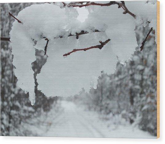 Snow Storm 4 Wood Print by Gene Cyr