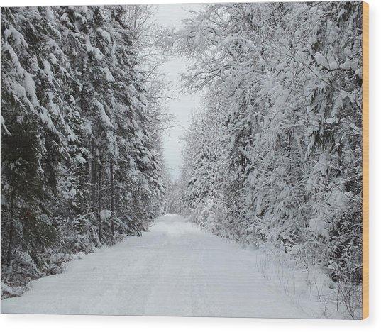 Snow Wall Wood Print by Gene Cyr