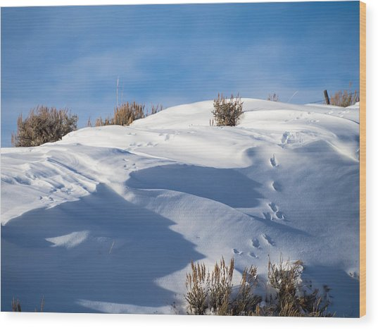 Snowdrifts Wood Print