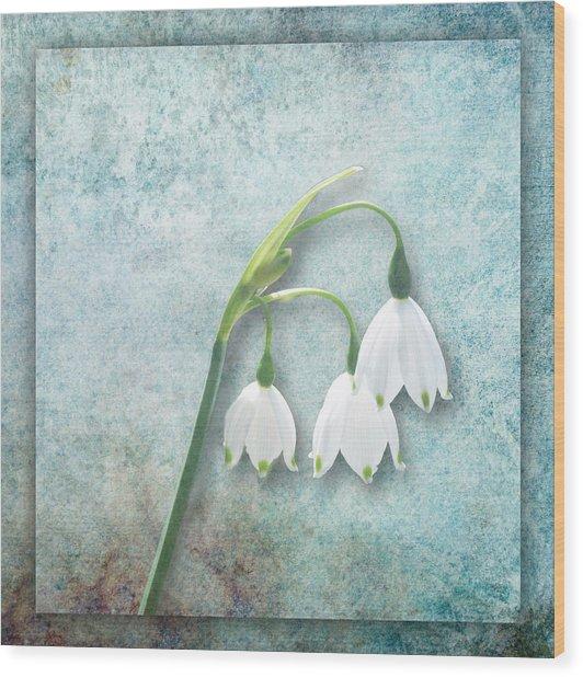 Snowdrop Wood Print