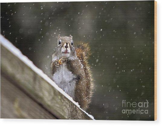 Snowflake Squirrel Wood Print