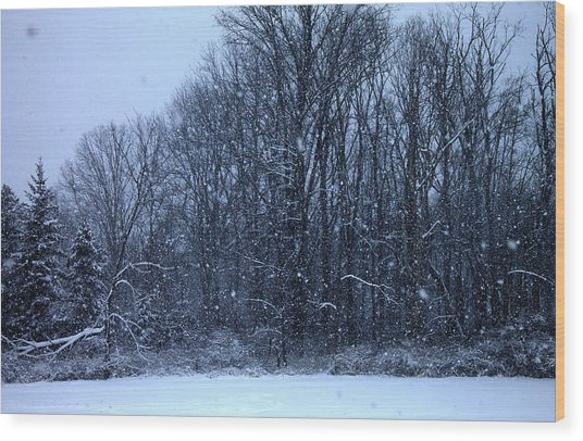 Snowing Wood Print by Barbara Giordano