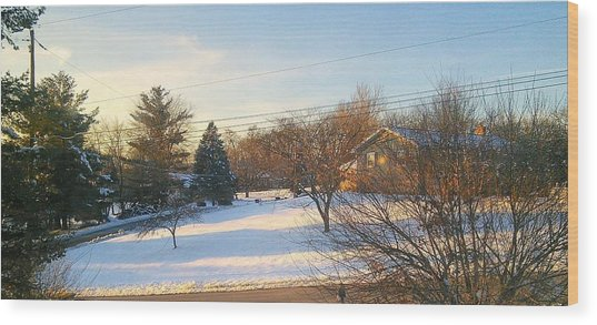 Snowy Afternoon Wood Print by Lucky Bro's