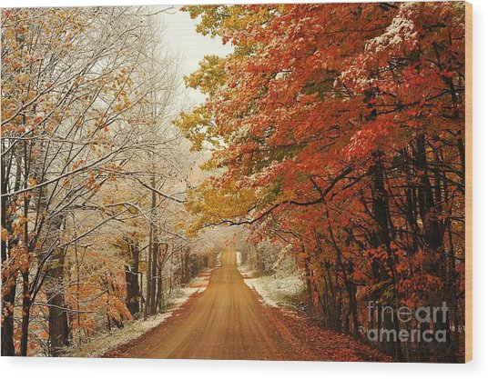 Snowy Autumn Road Wood Print