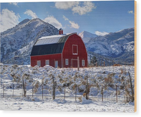 Snowy Barn In The Mountains - Utah Wood Print