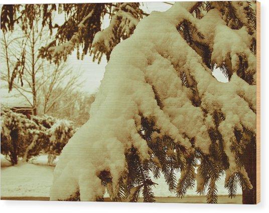 Snowy Branch Wood Print by Nickaleen Neff