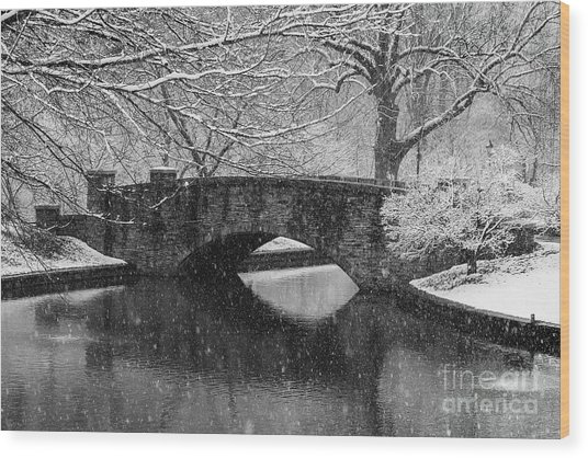 Snowy Bridge At Freedom Park I Wood Print
