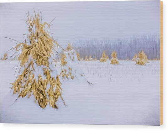 Snowy Corn Shocks - Artistic Wood Print