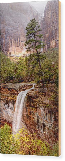 Snowy Day In Zion Wood Print by Darryl Wilkinson