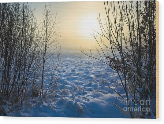Snowy Dream Wood Print
