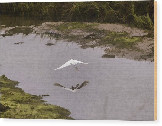 Great Egret Wood Print by Photographic Art by Russel Ray Photos