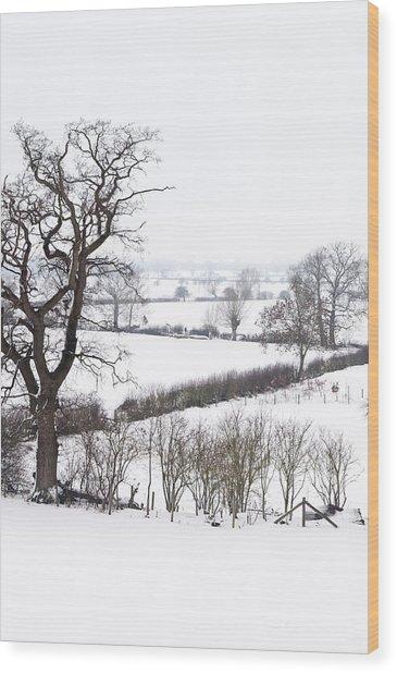 Snowy Fields Wood Print