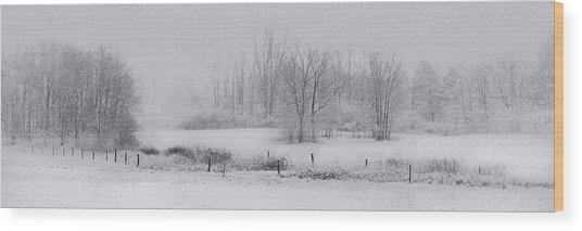 Snowy Fields Wood Print