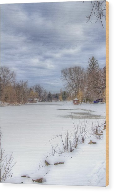 Snowy Lake Wood Print