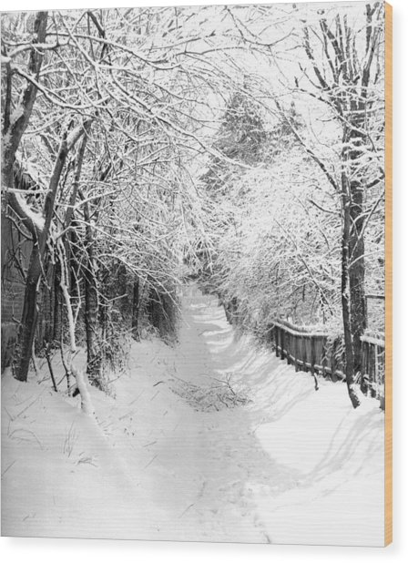 Snowy Lane Wood Print