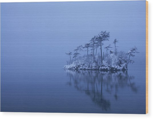Snowy Morning Wood Print by Ikuo Iga