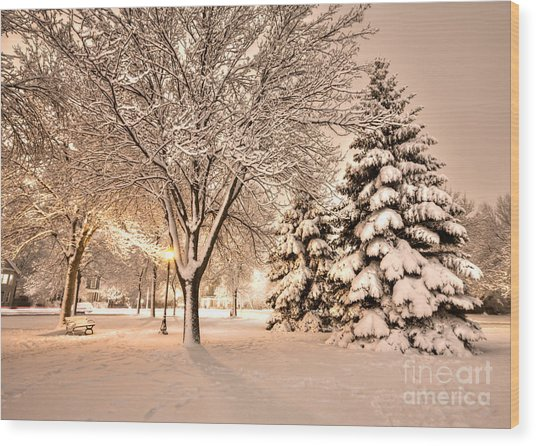 Snowy Night At Windom Park Wood Print by Kari Yearous