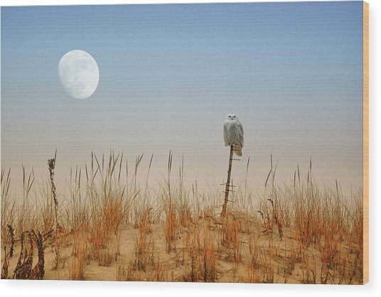 Snowy Owl And The Moon Wood Print