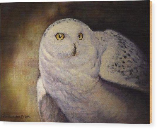 Snowy Owl Wood Print by Anna Franceova