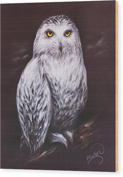Snowy Owl In The Night Wood Print