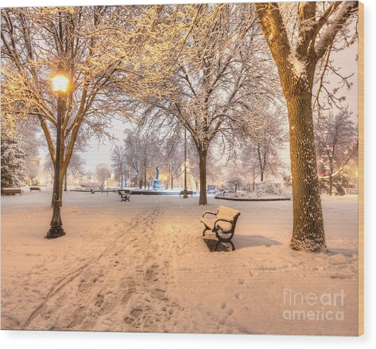 Wood Print featuring the photograph Snowy Path To Wenonah by Kari Yearous