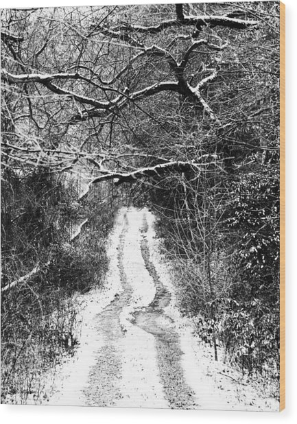 Snowy Path Wood Print