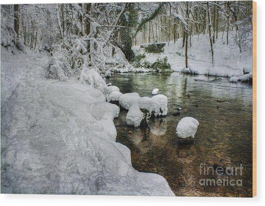 Snowy River Bank Wood Print