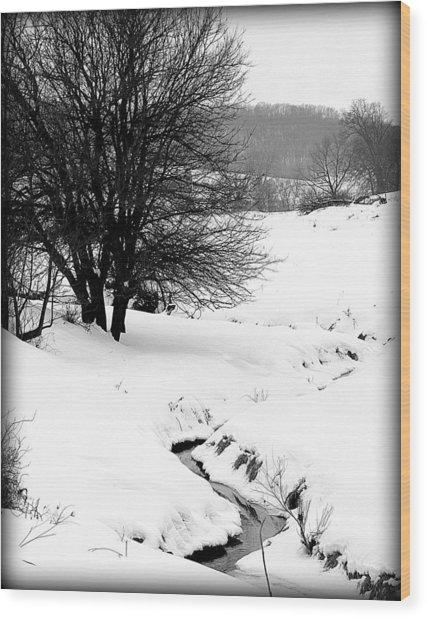 Snowy Stream Wood Print by Alexandra  Rampolla