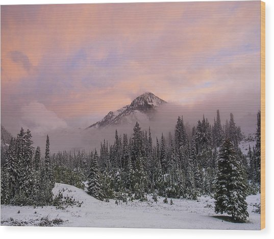 Snowy Surprise Wood Print