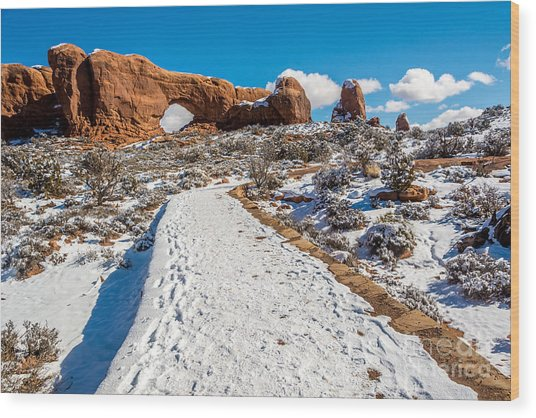Snowy Trail To The North Window Wood Print