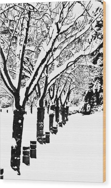 Snowy Walk Wood Print