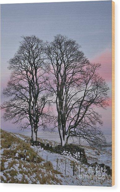 Snowy Winter Treescape Wood Print