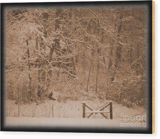Snowy Woods In Bronze Wood Print by Jamie Mcclellan Elsner