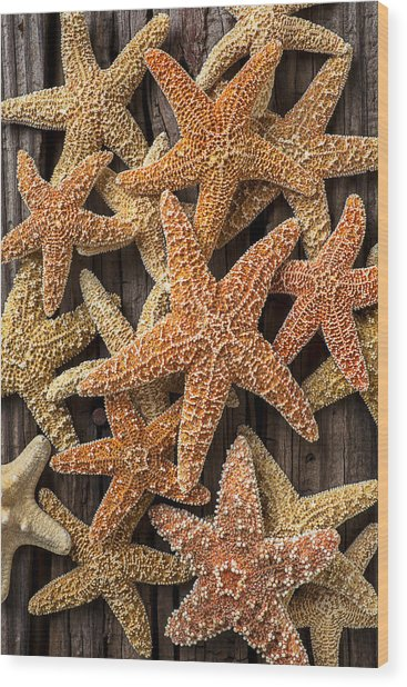 So Many Starfish Wood Print