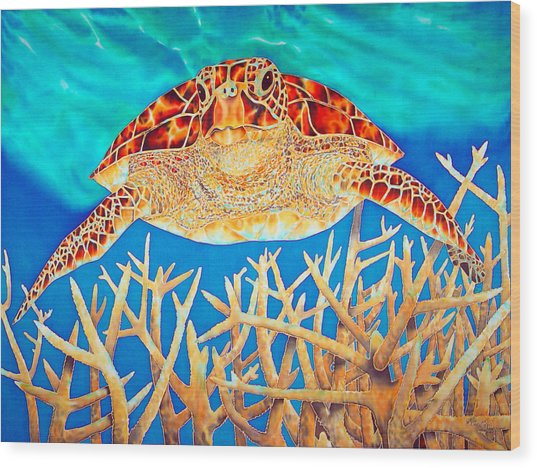Sea  Turtle Soaring Over Staghorn Wood Print