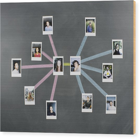 Social Network Diagram With Photos Wood Print by Jeffrey Coolidge