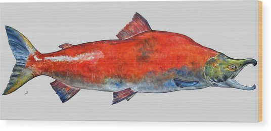 Sockeye Salmon Wood Print