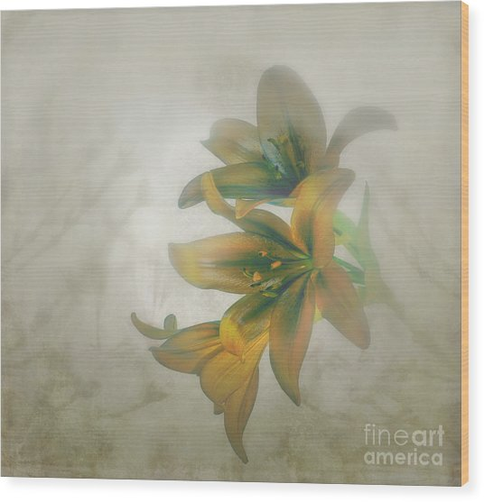 Soft And Sweet Wood Print