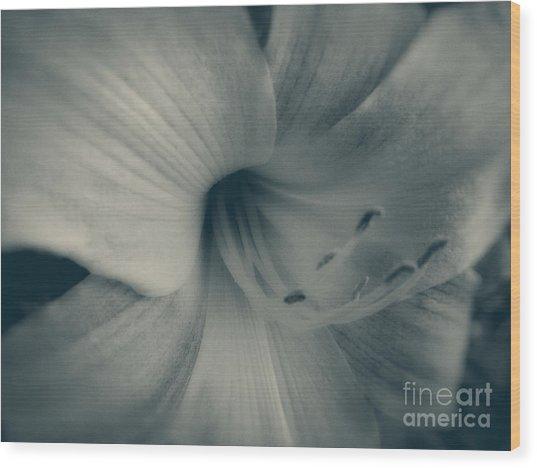 Soft Blossom Wood Print