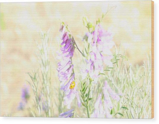 Soft Desert Flower Wood Print