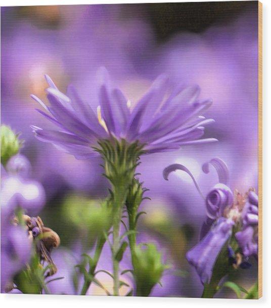 Soft Lilac Wood Print