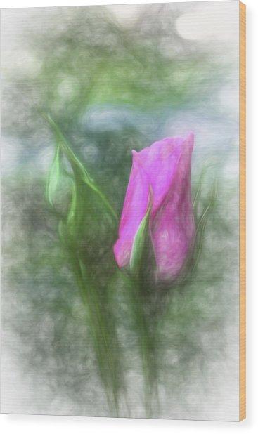 Soft Pink Bud Wood Print