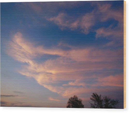 Soft Pink Clouds Wood Print by Virginia Forbes