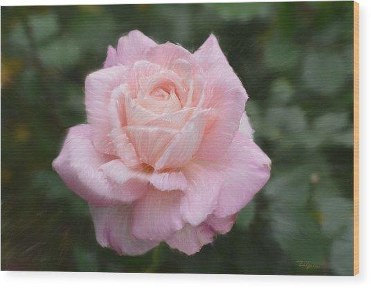 Soft Pink Wood Print