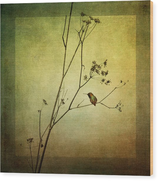 Solitary Moment Wood Print