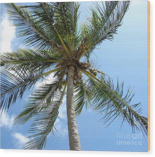 Solitary Palm Wood Print