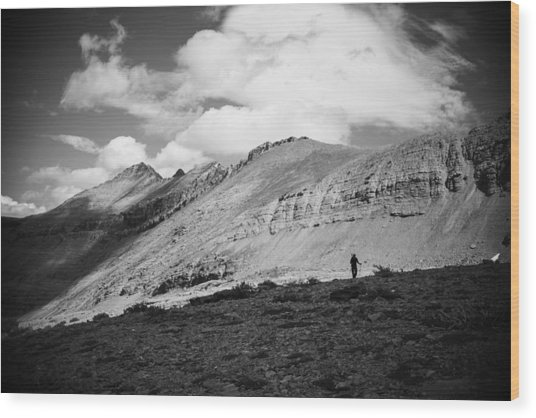 Solitude Below Sperry Glacier Wood Print